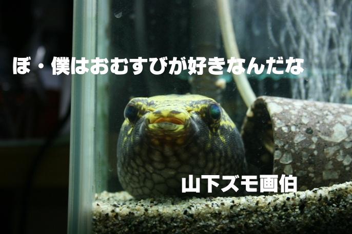 IMG_171.JPG