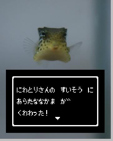IMG_3135.JPG
